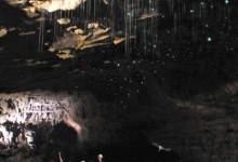 Waitomo pećine